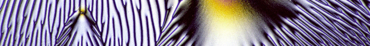 Banner Micrographs