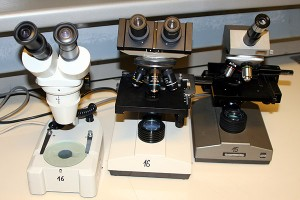 Different microscope types