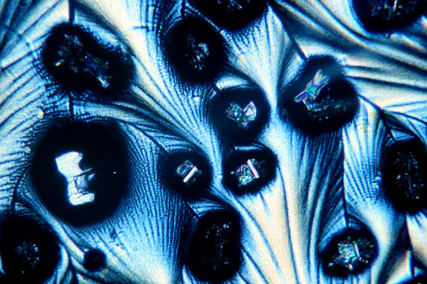 Vitamin C (ascorbic acid) in polarized light.