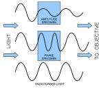 amplitude, phase