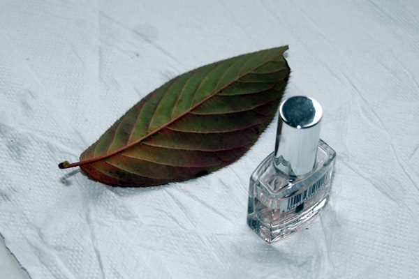 Nailpolish and a leaf.