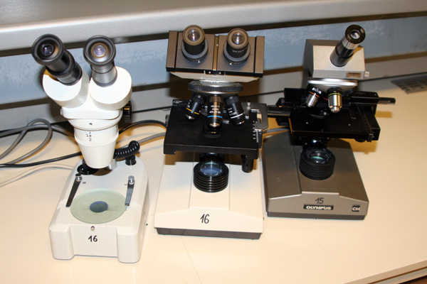Types of microscopes heads