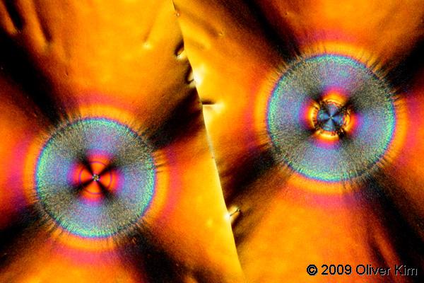 Vitamin C under polarized light.